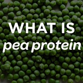 What is Pea Protein Isolate?